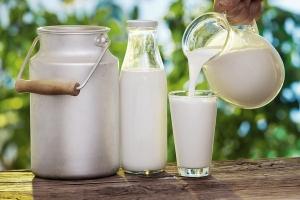 Top 10  công dụng làm đẹp bằng sữa tươi không đường hiệu quả nhất