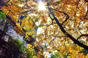 Top 13  địa điểm chụp ảnh đẹp nhất ở Hà Nội vào mùa thu